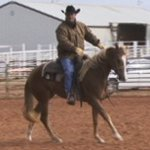 2 Yr. Old Training Pt. 1 Western with World Champion Trainer, Troy Compton