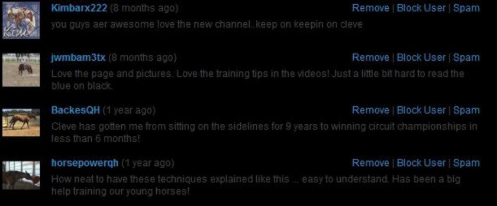 Praise from TheHorseTrainingChannel.com's YouTube Channel