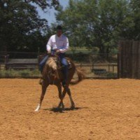 Control Your Horse's Speed With Lateral Exercises With World Champion Horse Trainer, Cleve Wells