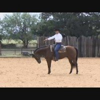 Creating Airtime With World Champion Horse Trainer Cleve Wells