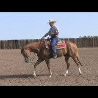 Transitions with Champion Trainer and AQHA Judge, Buddy Fisher Pt. 1