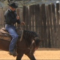 Daily Workout 2: Fundamental Exercises with World Champion Horse Trainer, Cleve Wells