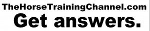 Get Answers to Your Horse Training Problems On TheHorseTrainingChannel.com