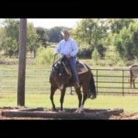 Enhance Your Trail Performance In The Backthroughs & The Box with World Champion Horse Trainer, Bruce Walquist