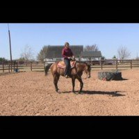 The Fundamentals to Winning Showmanship with World Champion, Brynne Davis