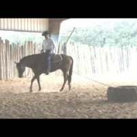 Exercise To Enhance Your Performance with World Champion Horse Trainer, Cleve Wells