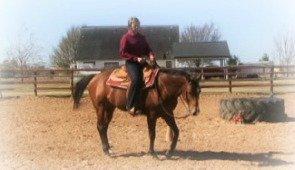 Horsemanship with Brynne D