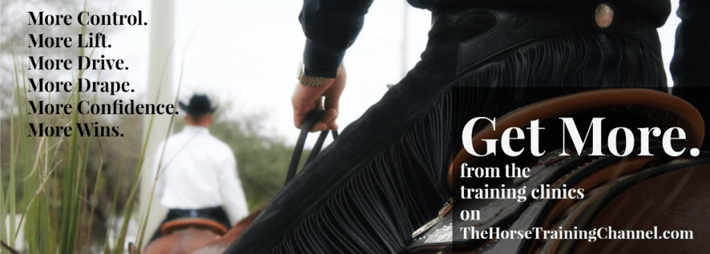 Get More From TheHorseTrainingChannel